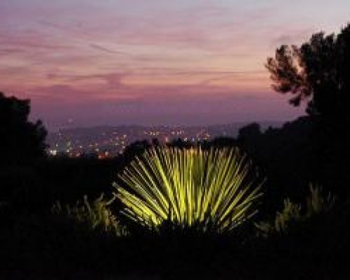 Eclairage de vos plantes